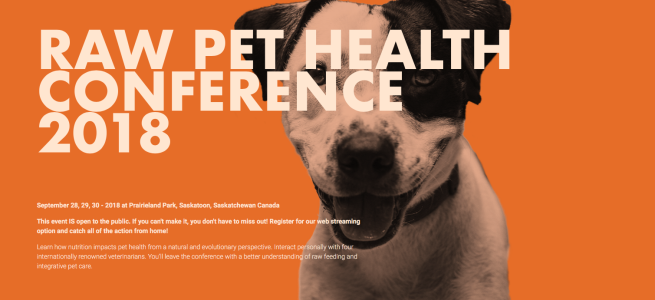 Raw Pet Health Conference 2018: Interviews with Dr Marty